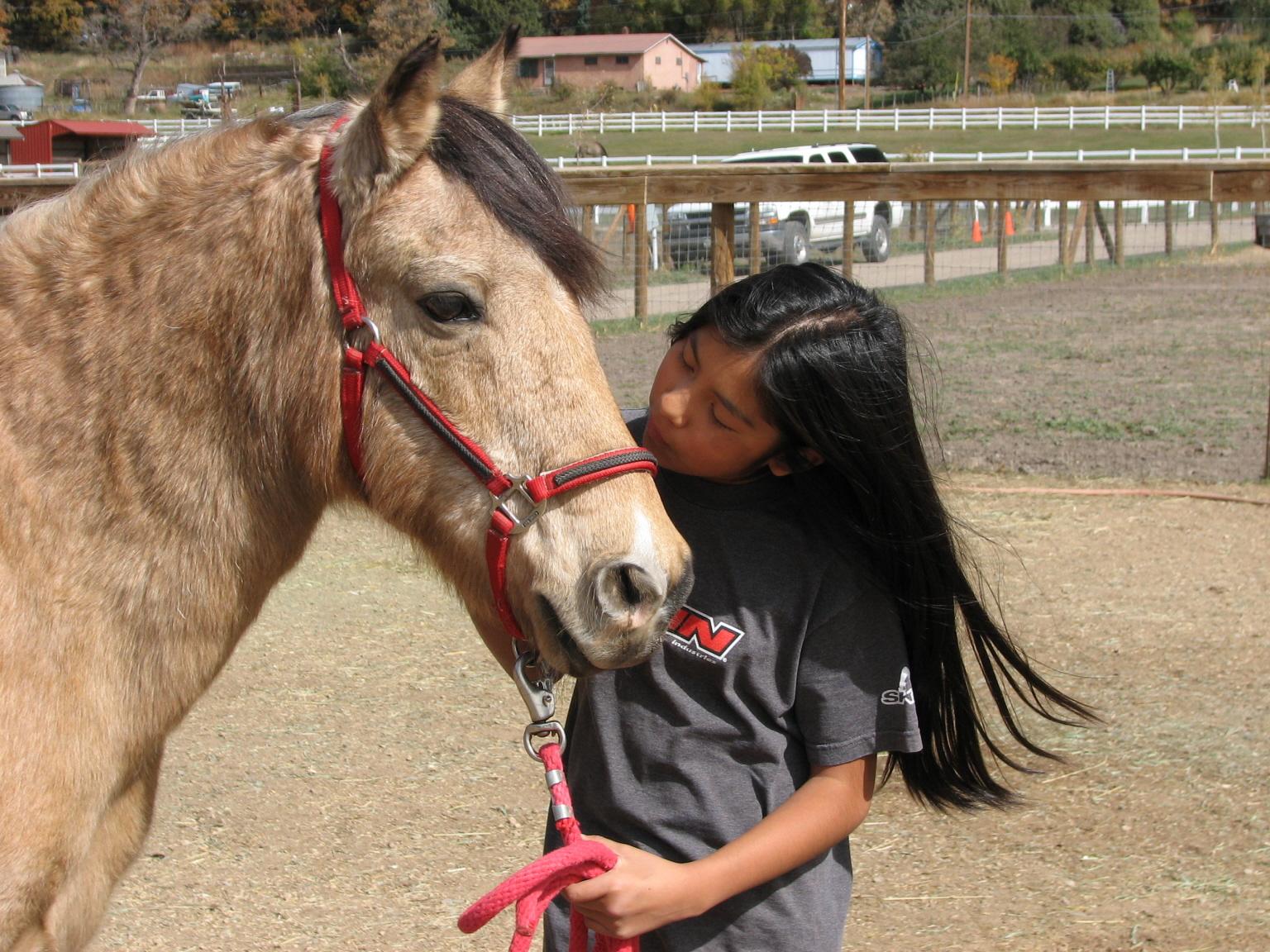 Medicine Horse Leadership Training